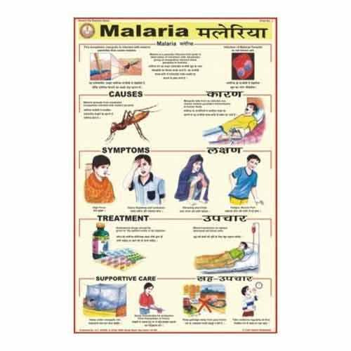 Essays On Malaria