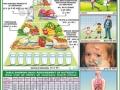 Chart - Food Nutritive Value